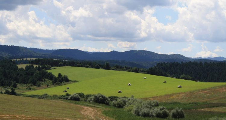 Shoulder season travel - Eastern Slovakia