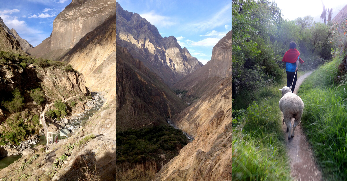 Trekking Colca Canyon without a guide
