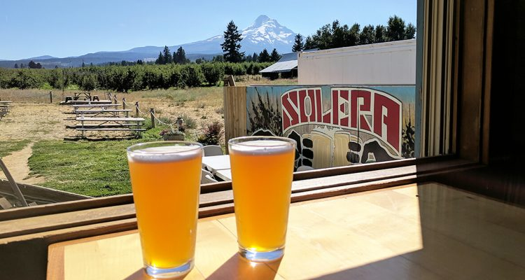 Best local breweries with a view - Solera