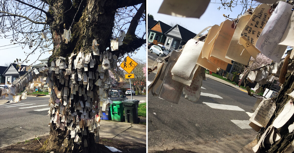 Weird things to do in Portland Ore - Wishing Tree