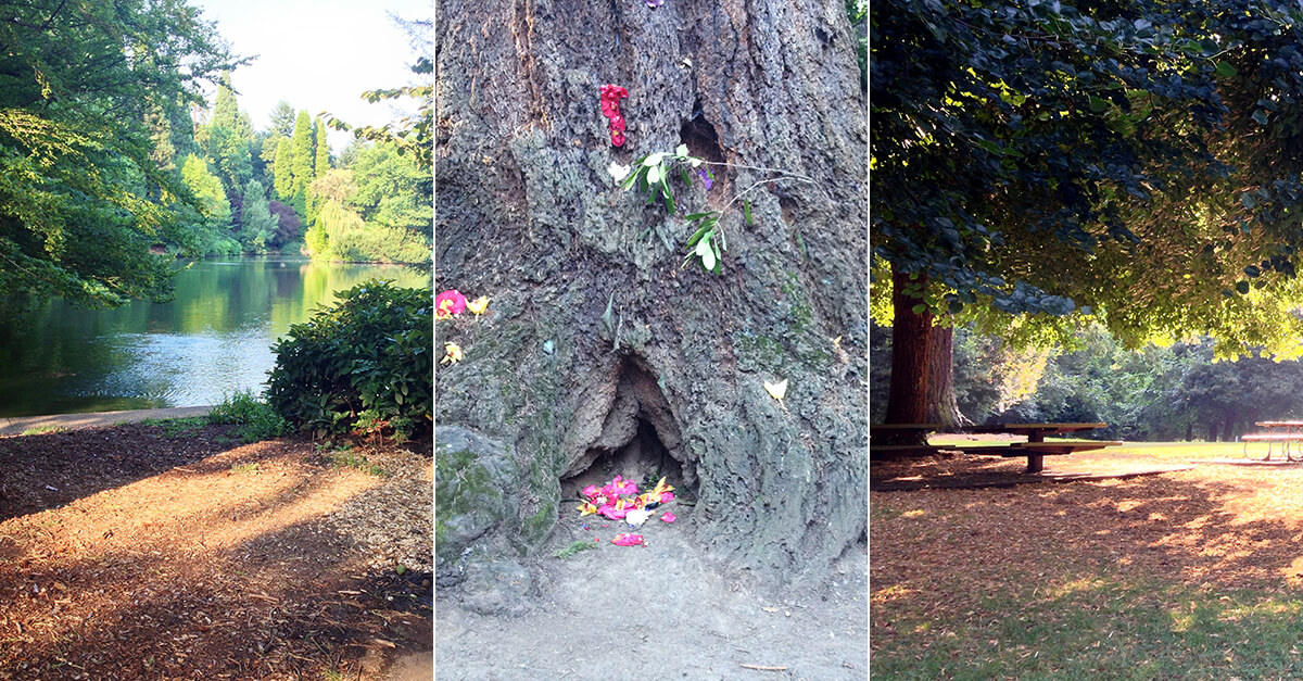 Weird things to do in Portland, Oregon - Laurelhurst Park