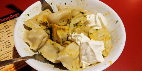 Best restaurants in Olympia- WA - Rush In Alaska Dumplings